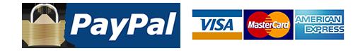 paypal-logo-vector-image